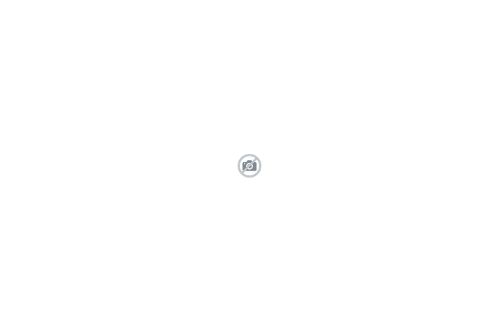 SKODA CONNECT